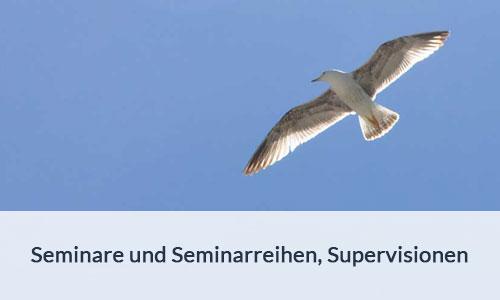 Seminare und Seminarreihen, Supervisionen