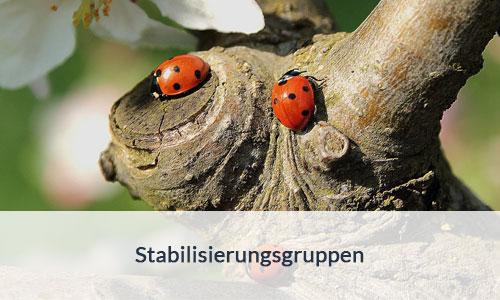 Stabilisierungsgruppen